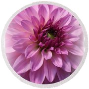 Dahlia Lovely In Lavender Round Beach Towel by Dora Sofia Caputo Photographic Art and Design