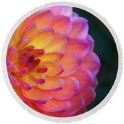 Dahlia Portrait Round Beach Towel