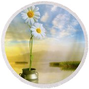 Daisies In The Summer Morning Round Beach Towel