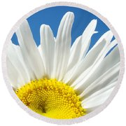 Daisy Art Prints White Daisies Flowers Blue Sky Round Beach Towel