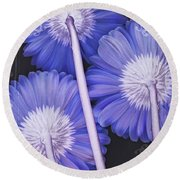 Daisy Days And Nights II Round Beach Towel