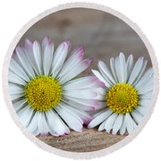 Daisy Flowers Round Beach Towel