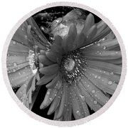 Daisy In The Rain Round Beach Towel