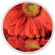Daisy Reflections Round Beach Towel
