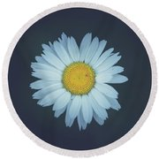 Round Beach Towel featuring the photograph Daisy  by Shane Holsclaw