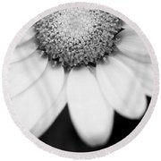 Daisy Smile - Black And White Round Beach Towel
