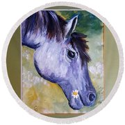 Daisy The Old Mare     52 Round Beach Towel