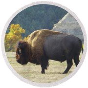 Dakota Badlands Majesty Round Beach Towel