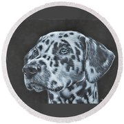 Dalmation Portrait Round Beach Towel