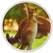 Damn Flies, Yanchep National Park Round Beach Towel