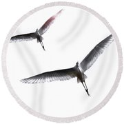 Dance Of The Egrets Round Beach Towel