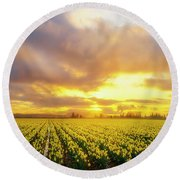 Dances With The Daffodils Round Beach Towel