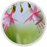 Round Beach Towel featuring the photograph Dancing Fuchsia by Terence Davis