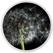 Round Beach Towel featuring the photograph Dandelion 2 by James Sage