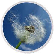 Dandelion And Blue Sky Round Beach Towel