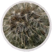 Round Beach Towel featuring the photograph Dandelion Head by William Selander