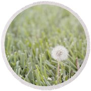Round Beach Towel featuring the photograph Dandelion In The Grass by Cindy Garber Iverson