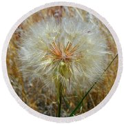 Round Beach Towel featuring the photograph Dandelion by Jennifer Muller