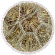 Dandelion Particles Round Beach Towel