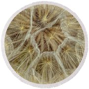 Dandelion Particles Round Beach Towel
