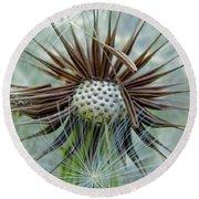 Dandelion Seeds Round Beach Towel