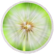 Dandelion Warp Round Beach Towel by David Stasiak