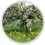 Dandelions And Apple Blossoms Round Beach Towel