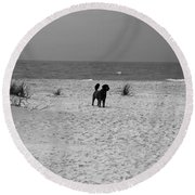 Dandy On The Beach Round Beach Towel by Michiale Schneider