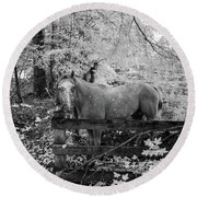 Dappled Face Horse II Round Beach Towel