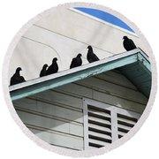 Dark Pigeons Round Beach Towel