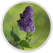 Dark Violet Lilac Round Beach Towel