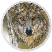 Round Beach Towel featuring the digital art Dark Wolf With Birch by Darren Cannell