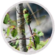 Darner Round Beach Towel