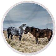 Dartmoor Ponies On Dartmoor Round Beach Towel