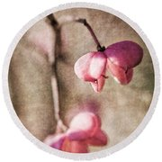 Das Pfaffenhuetchen - Spindle Tree Round Beach Towel