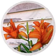Day Lilies And Peeling Paint Round Beach Towel by Nancy Patterson
