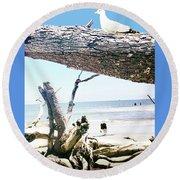 Daydreams And Driftwood Round Beach Towel