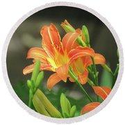 Orange Daylilies In The Garden 1 Round Beach Towel by Brooks Garten Hauschild