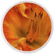 Round Beach Towel featuring the photograph Daylily Close-up by Sandy Keeton