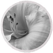 Daylily Delight In Black And White Round Beach Towel