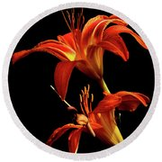 Round Beach Towel featuring the photograph Daylily Double by Douglas Stucky