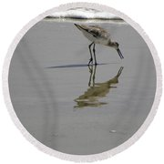 Daytona Beach Shorebird Round Beach Towel