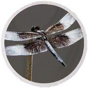 Dazzling Dragonfly Round Beach Towel