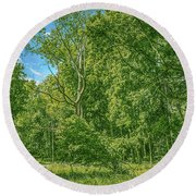Round Beach Towel featuring the photograph Dead Tree Gaeddeholm by Leif Sohlman