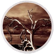 Round Beach Towel featuring the photograph Dead Tree In Death Valley 11 by Micah May