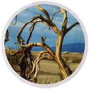 Round Beach Towel featuring the photograph Dead Tree In Death Valley 12 by Micah May