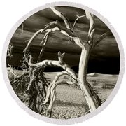 Round Beach Towel featuring the photograph Dead Tree In Death Valley 13 by Micah May