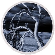 Round Beach Towel featuring the photograph Dead Tree In Death Valley 14 by Micah May