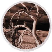 Round Beach Towel featuring the photograph Dead Tree In Death Valley 15 by Micah May
