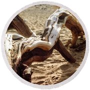 Round Beach Towel featuring the photograph Dead Tree In Death Valley 16 by Micah May